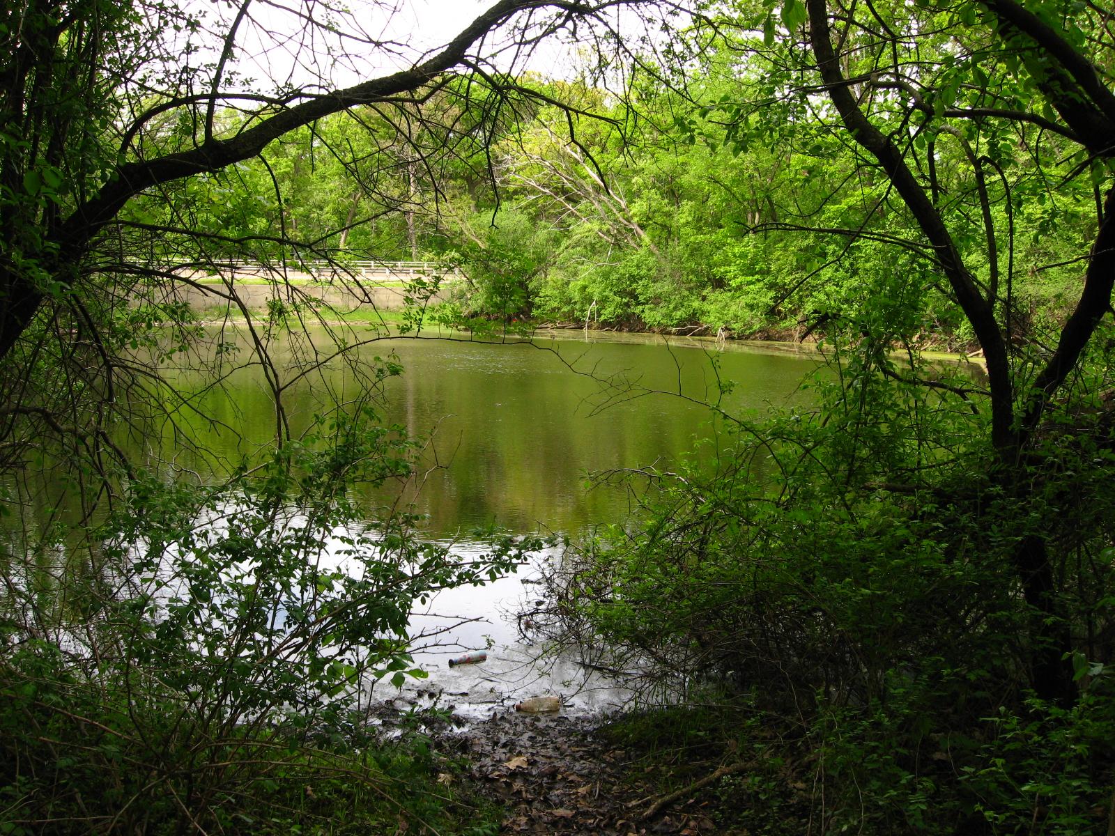 Bachelor's Grove Lagoon