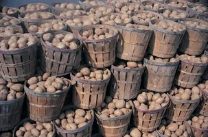 Potatoes stored in baskets