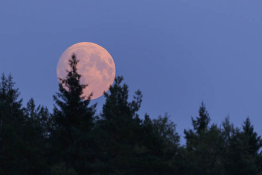 April 2019 Pink Full Moon - Seeing The Good In Others
