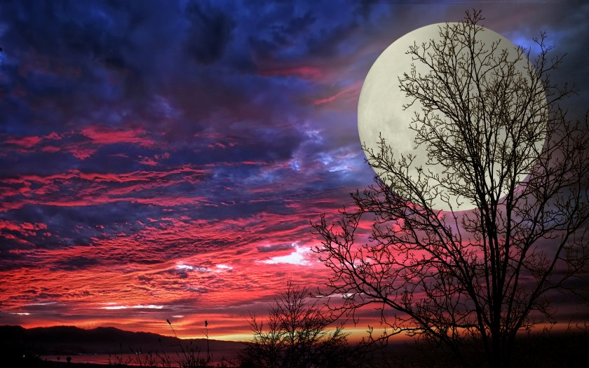 June Full Moon Ritual for 2019 - The Halfway Point of the Year -